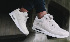Foot Locker Nike Air Max 90 Essential