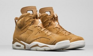 Air Jordan 6 Golden Harvest (Wheat)